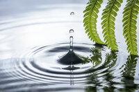 Hoe komt het dat water informatie opslaat en zo als het ware een geheugen heeft?